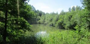 Terrain de loisirs avec étang